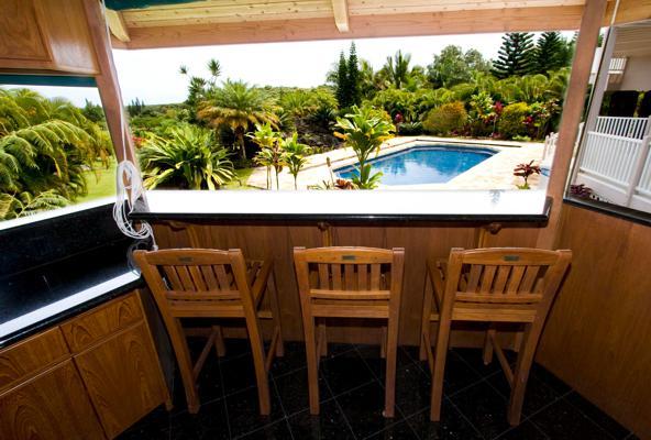 kitchen bbq view